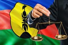 De rechter houdt gouden schalen van rechtvaardigheid met golvende de vlagachtergrond van Nieuw-Caledonië Gelijkheidsthema en juri royalty-vrije illustratie
