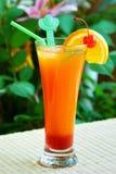 De recreatieve drank van de zomer stock foto's