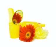 De reeks en de bloem van de lichaamsverzorging Stock Fotografie
