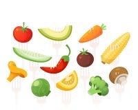 De reeks gezonde vitamine volledige groenten pined op vorken royalty-vrije illustratie