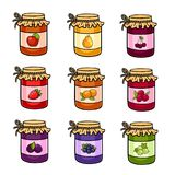 De reeks hand-drawn kruiken met jam stock illustratie