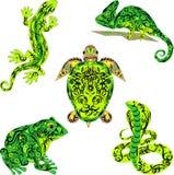 De reeks met reptielen, is heel wat vectordieren, een dier met een patroon op een lichaam, het hagediskruipen, een grote kikker,  royalty-vrije illustratie