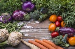 De reeks natuurlijke organische groenten voor voorbereidings vegetarisch voedsel - aubergine, tomaten, wortelen, slabonen, selder stock foto's