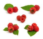De reeks rode frambozenhopen met doorbladert op wit Stock Foto's