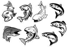 De reeks van beeldverhaal salmons vissen Stock Afbeelding