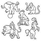 De reeks van Circus leidde wilde dierenprestaties op op witte, Zwarte contour voor het kleuren worden geïsoleerd die Royalty-vrije Stock Afbeeldingen
