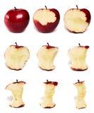 De Reeks van de appel Stock Afbeelding
