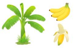 De reeks van de banaan Royalty-vrije Stock Afbeeldingen