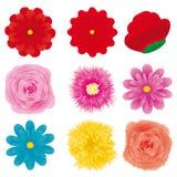 De reeks van de bloem, deel 3 Royalty-vrije Stock Foto