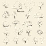 De reeks van de bomenschets, uitstekende vectorstijl, getrokken hand Royalty-vrije Stock Afbeeldingen