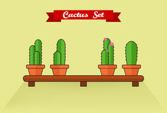 De reeks van de cactus Stock Foto's