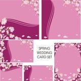 De reeks van de de lentekaart van het huwelijk Royalty-vrije Stock Foto's