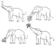 De reeks van de de tekeningsolifant van de hand Stock Afbeeldingen