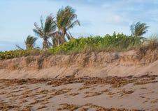 De Reeks van de Erosie van het strand Royalty-vrije Stock Afbeelding