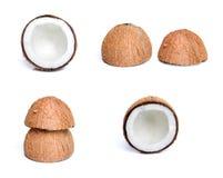 De reeks van de kokosnoot Royalty-vrije Stock Foto's