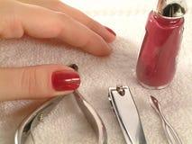 De reeks van de manicure Stock Foto