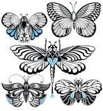 De reeks van de vlinder Royalty-vrije Stock Fotografie
