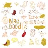 De reeks van de vogelkrabbel Vector illustratie Royalty-vrije Stock Afbeelding