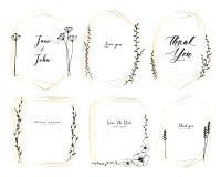 De reeks van geometrisch kader, getrokken Hand bloeit, Botanische samenstelling, Decoratief element voor huwelijkskaart, Uitnodig royalty-vrije illustratie
