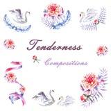 De reeks van hand schilderde waterverfzwanen, pioenen, takje, lint, veren stock illustratie