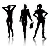 De reeks van het de vrouwensilhouet van de manier Stock Fotografie