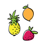 De reeks van het fruit Stock Foto's