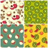De reeks van het fruitpatroon Stock Afbeelding