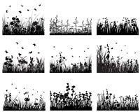 De reeks van het gras Stock Foto
