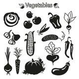 De reeks van het groentenpictogram Royalty-vrije Stock Foto