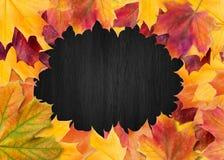 De reeks van het de herfstontwerp van affiches en achtergrond De achtergrond van de herfst Rode en oranje het bladclose-up van de vector illustratie