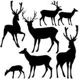 De reeks van het hertensilhouet Stock Afbeeldingen