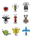 De Reeks van het insect Royalty-vrije Stock Foto's