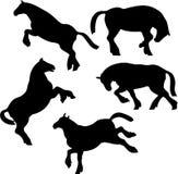 De Reeks van het Silhouet van het paard vector illustratie