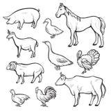De reeks van de landbouwbedrijf dierlijk tekening, binnenlandse en landbouwsymbool stock illustratie