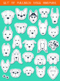 De reeks van 24 verschillende stickers kweekt met de hand gemaakte honden, Hoofdhond Royalty-vrije Stock Afbeeldingen