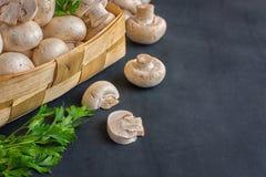 De reeks van verse gehele en gesneden champignon schiet in een mand op een donkere achtergrond als paddestoelen uit de grond Stock Foto