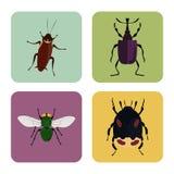 De reeks van vier kleurt vlakke insectenpictogrammen Stock Foto