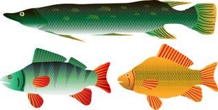 De reeks van vissen royalty-vrije illustratie