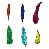 De reeks van vogel kleurde veren op witte achtergrond worden geïsoleerd die Mooie elementen voor decoratie Hand getrokken veren Stock Afbeelding