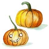 de reeks van de waterverftekening, oranje pompoenen voor Halloween op witte achtergrond, voor decoratie, illustratie Stock Foto's