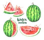 De reeks van de waterverfwatermeloen op witte achtergrond wordt geïsoleerd die royalty-vrije illustratie