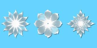 De reeks van Witboek sneed modieuze vectorkantbloemen voor decoratio royalty-vrije stock afbeeldingen