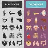 De reeks van zestien menselijke organen en de anatomische delen kleuren en zwarte vlakke pictogrammen Stock Foto's