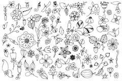 De reeks van zwart-witte krabbel bloeit bladeren Hand getrokken vectorontwerpelementen Stock Foto's
