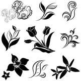 De reeks van zwarte bloem en doorbladert ontwerpelementen Stock Afbeeldingen