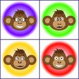 De reeks verschillende apen EPS 10 Royalty-vrije Stock Fotografie