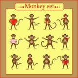 De reeks verschillende apen EPS 10 Stock Afbeelding