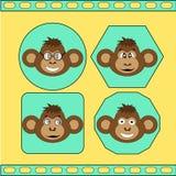 De reeks verschillende apen EPS 10 Royalty-vrije Stock Foto's
