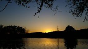 De reeksen van de zon achter de bomen stock footage