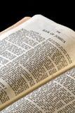 De reeksjoshua van de bijbel Stock Foto